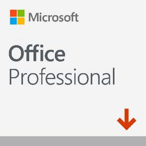 Microsoft Office Professional 2019 1 PC/Mac Download | Officeworks