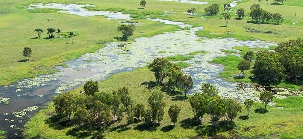 Helping restore Australian landscapes