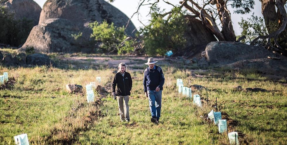 Landholder Charles Massy, and Greening Australia Ecologist, scientist Nicki Taws at our Restoring Australia planting site in Monaro.  Credit: Annette Ruzicka