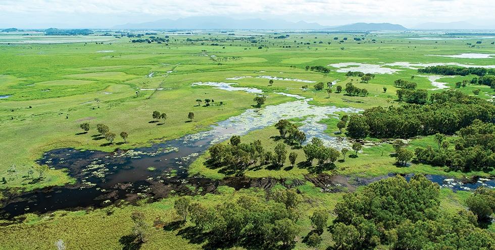 Queensland - Coastal wetlands near Mungalla Station. Credit: Annette Ruzicka