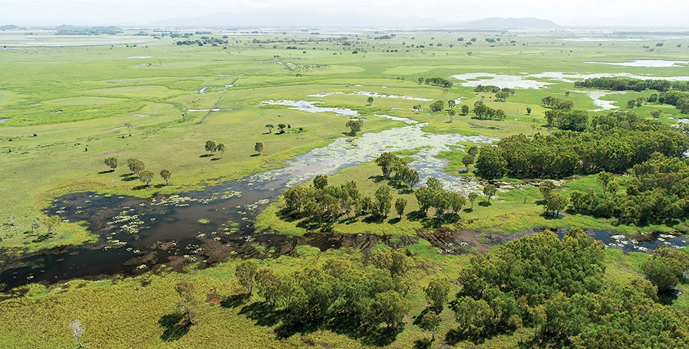 Queensland - Helping to restore wetlands near Mungalla Station in northern Queensland. Credit: Annette Ruzicka
