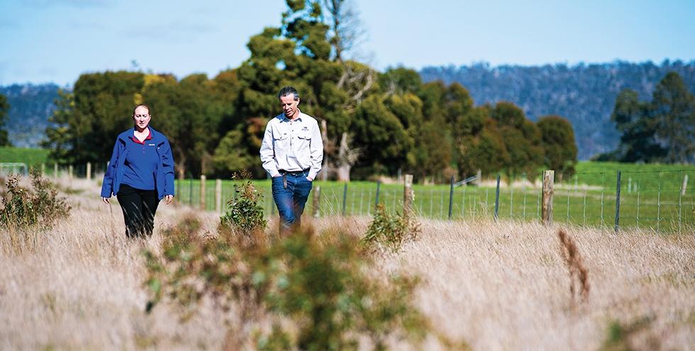 Tasmania - Team member Kim and landowner Julian Von Bibra inspect two-year-old seedlings in the Tasmanian Midlands.