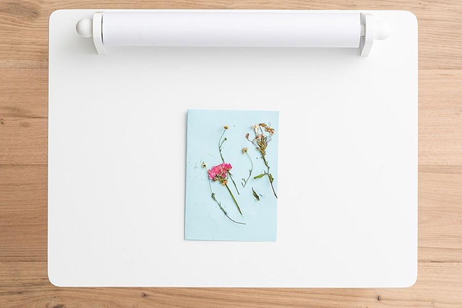 Autumn art and craft activity for kids to do at home: pressed flower keepsake